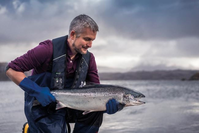 Loch Duart has been an independent salmon farm for 20 years