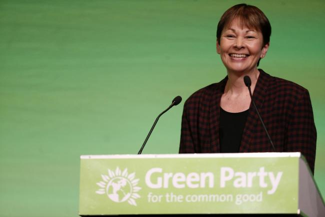 The FM said Caroline Lucas's idea would bring a 'different perspective'