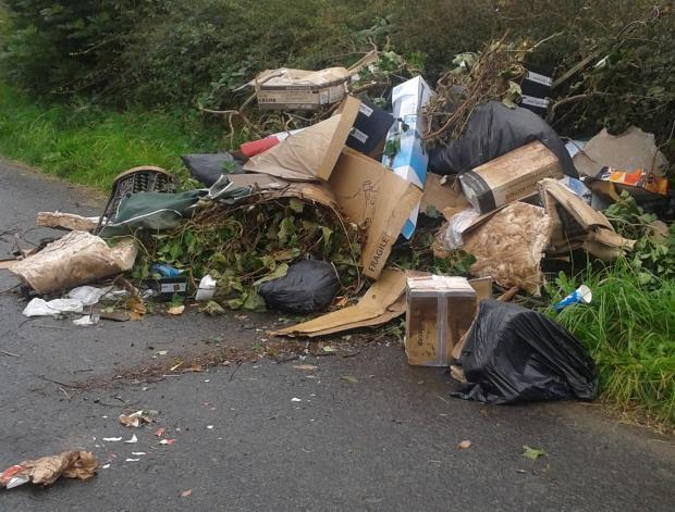 Do some people imagine hedges can swallow and digest their dumped waste?