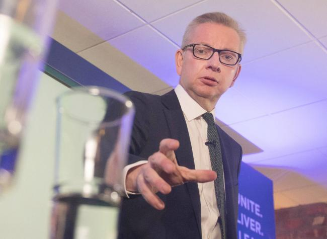 Michael Gove is one of ten candidates who will be whittled down to two by Tory MPs before party members choose the next Prime Minister
